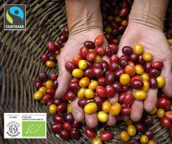 """Alt=""""vorrei italian organic coffee beans"""""""