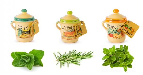 """Alt=vorrei italian herbs - ceramic pots"""""""