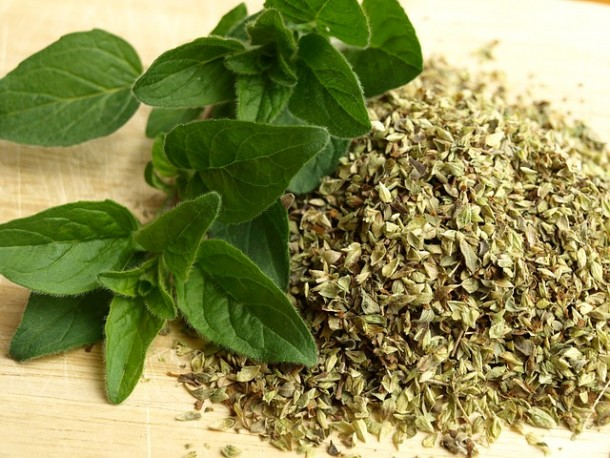 "Alt=""vorrei italian herbs - oregano"""
