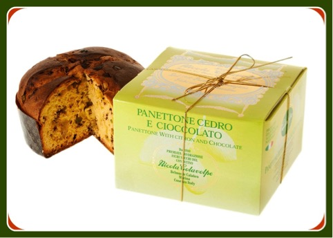 citrus and chocolate panettone