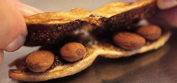 """Alt=""""vorrei italian figs santomiele cilentana"""""""