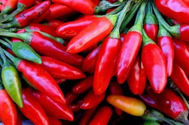 "Alt=""vorrei italian red hot chilli peppers"""