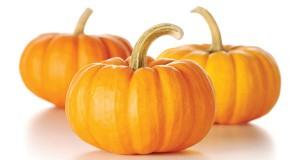 "Alt=""vorrei italian paccheri pasta with pumpkin"""