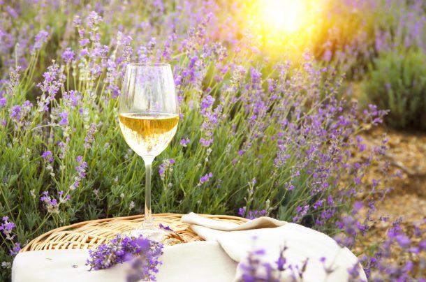"""Alt=vorrei italian natural wines"""""""