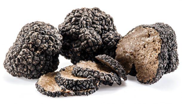 """Alt=""""vorrei italia""""n black summer truffles"""